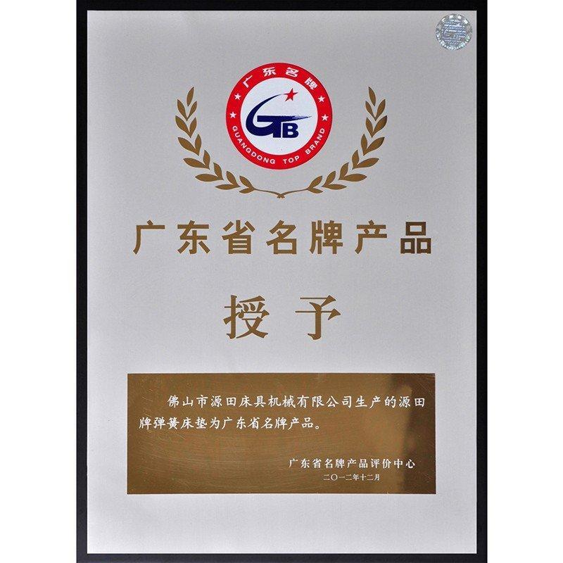 Guangdong Famous Brand Product Mattress